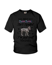 My Cane Corso is not spoiled 2006L Youth T-Shirt thumbnail