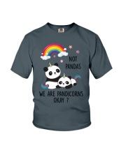 Pandicorns 2911 Youth T-Shirt thumbnail