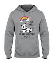 Pandicorns 2911 Hooded Sweatshirt thumbnail