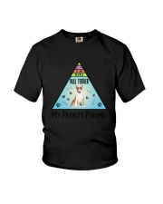 Bull Terrier Pyramid 1806 Youth T-Shirt tile