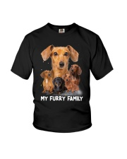 Dachshund Furry Family 2006 Youth T-Shirt thumbnail