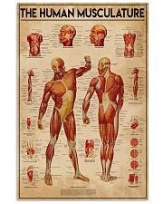 Massage therapist The Human Musculature 11x17 Poster front