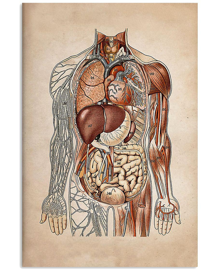 Surgeon Human Organs 11x17 Poster