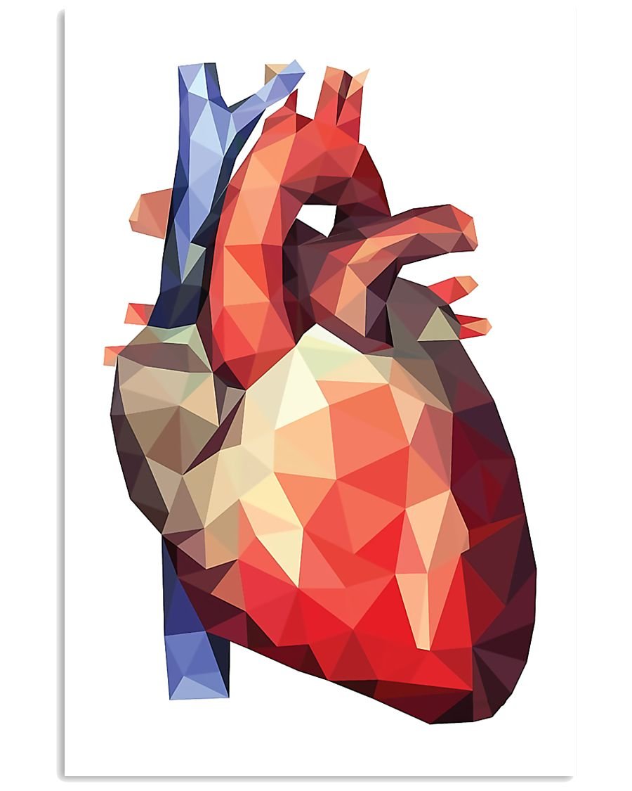 Human Heart Cardiologist 11x17 Poster