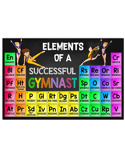 Elements Of A Successful Gymnast