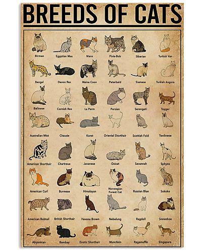 Veterination Breeds of Cats