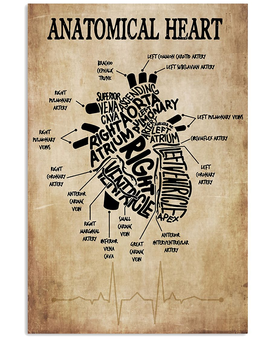 Anatomical Heart Vintage Cardiologist 11x17 Poster
