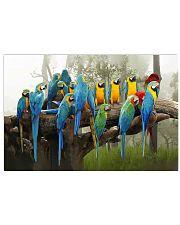 Blue Parrots 17x11 Poster front