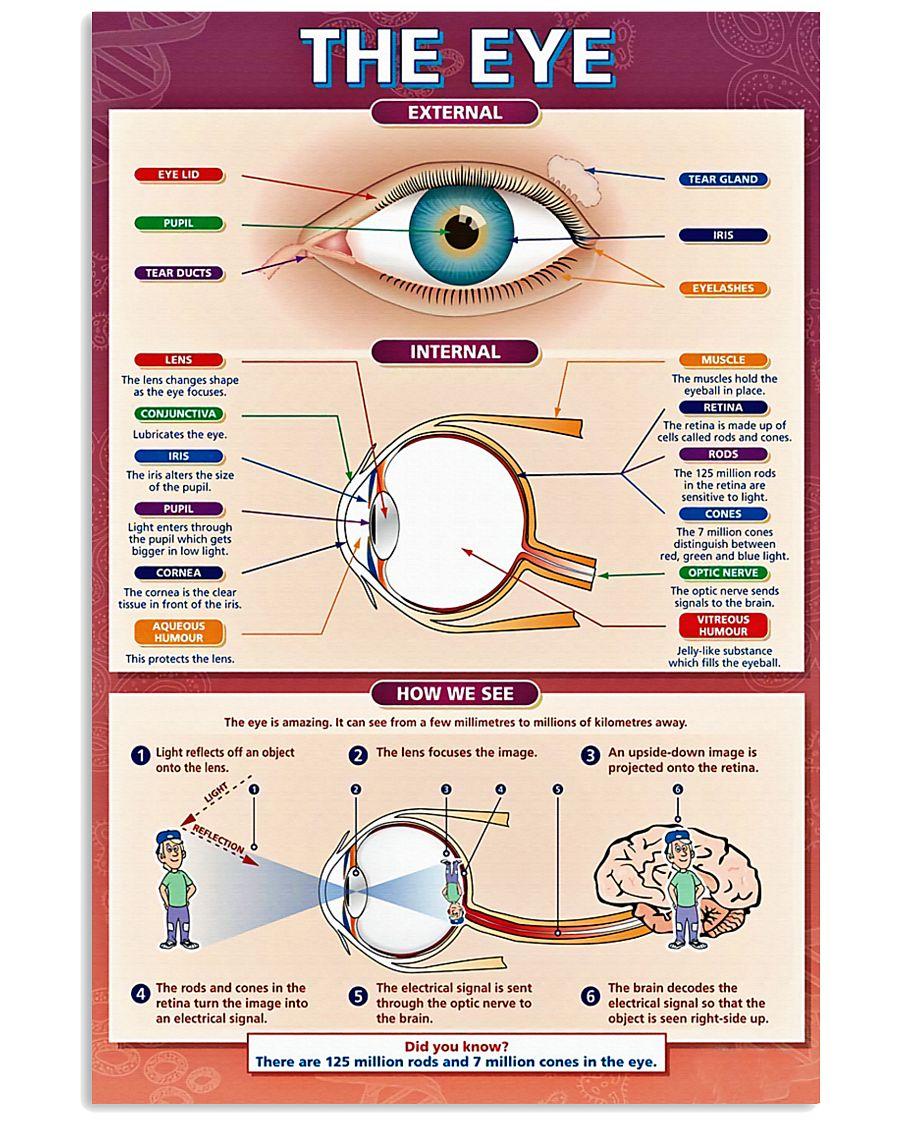 Optometrist The Eye 11x17 Poster