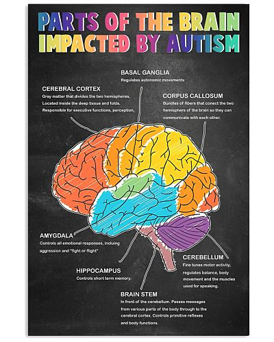Parts Of The Brain Impacted By Autism