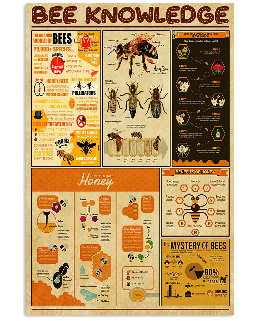 Bee Knowledge 11x17 Poster