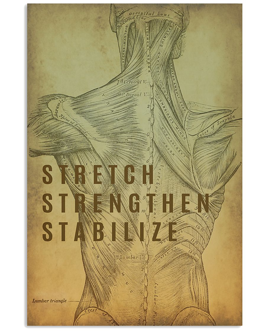Physical Therapy Stretch Strengthen Stabilize 11x17 Poster