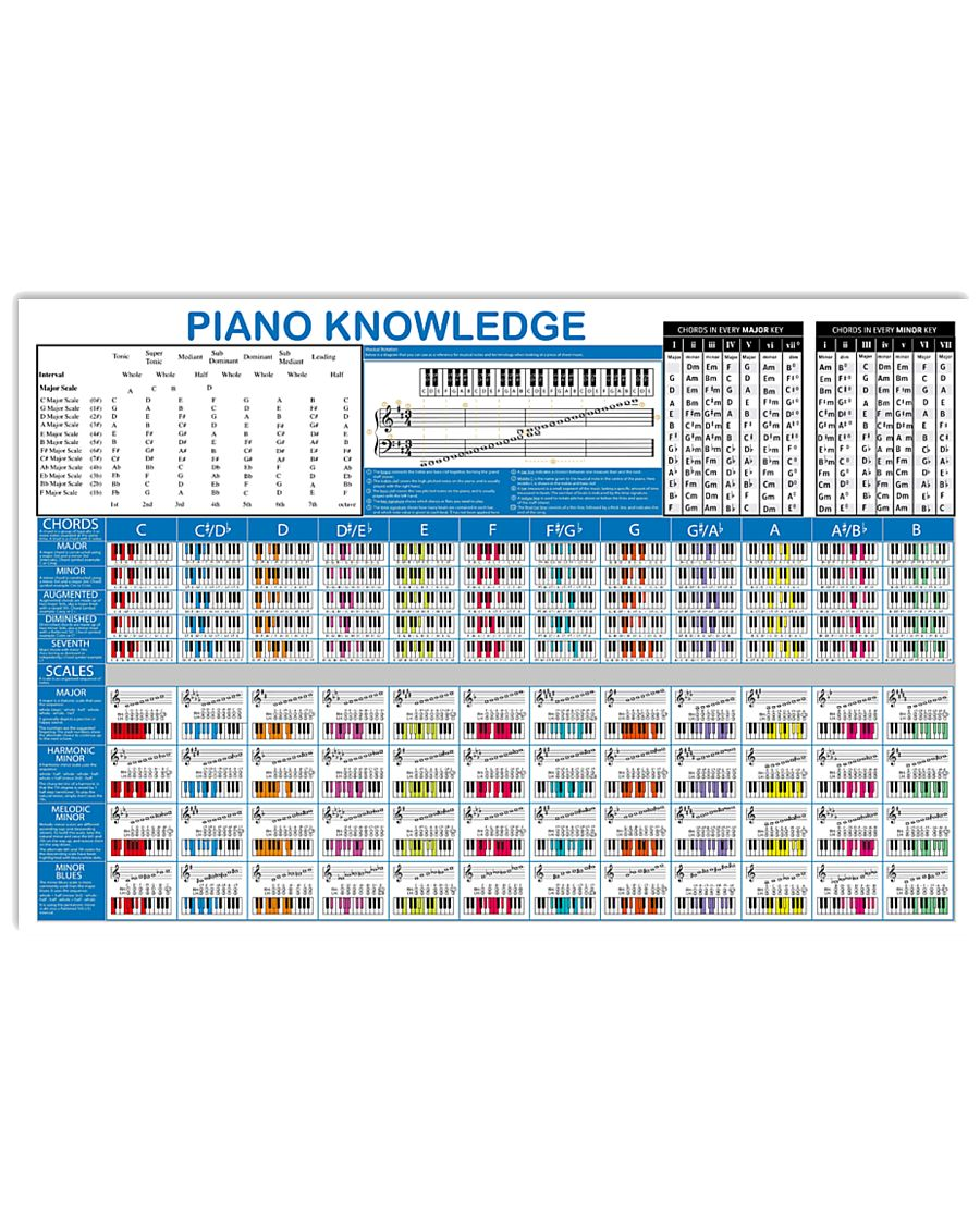 Pianist Piano Knowledge 17x11 Poster