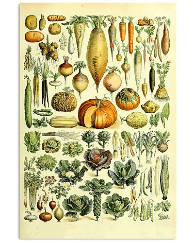 Dietitian Nutritionist Vegetables