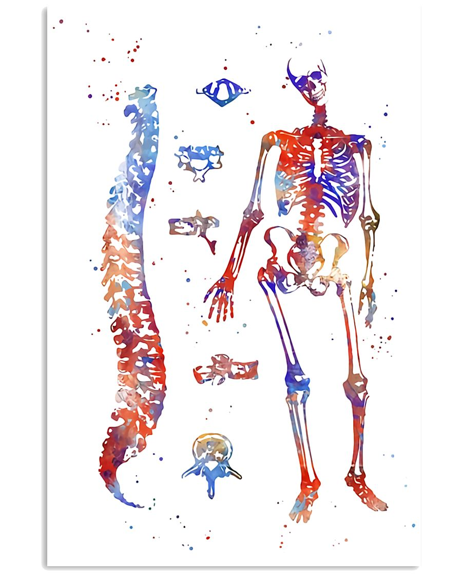 Physical Therapist Human Skeleton System Art 11x17 Poster