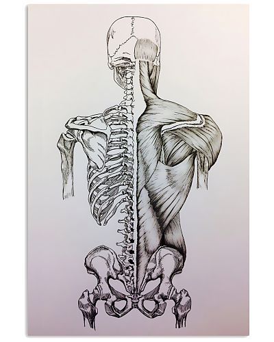 MT Human Body Anatomy And Physiology