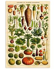 Dietitian Vegetables  11x17 Poster front