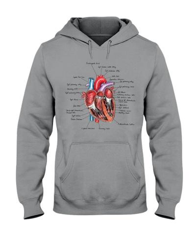 Anatomy Heart Paramedic