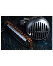 Blues Harmonica Microphone 17x11 Poster front