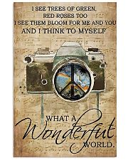 Photographer A Wonderful World  11x17 Poster front