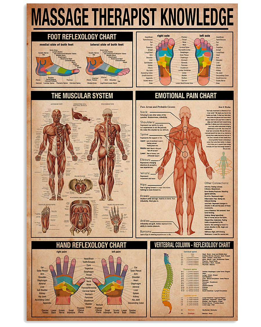 Massage Therapist Knowledge 11x17 Poster