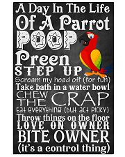 A day in the life of a Parrot Poster 11x17 Poster front