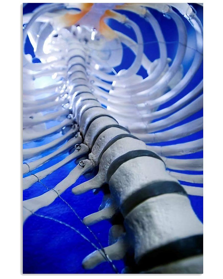 Chiropractor Spine 11x17 Poster
