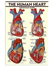 The Heart Cardiologist 11x17 Poster front