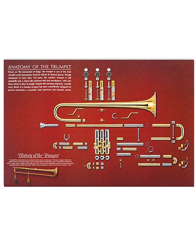 Trumpeters Anatomy of the Trumpet