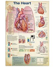 Cardiologist The Heart 11x17 Poster front