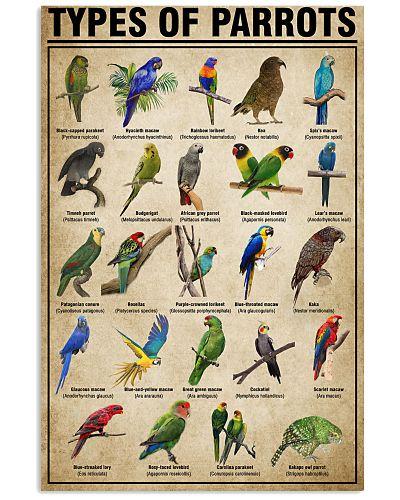 Parrot Types of Parrots