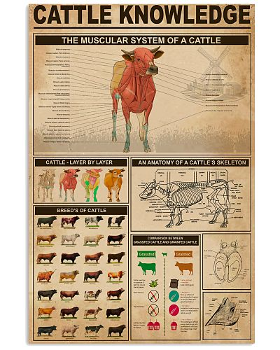 Veterinarian Cattle Knowledge Poster