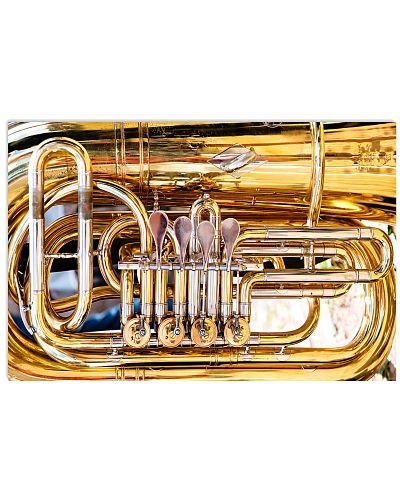 Tubist Big Tuba