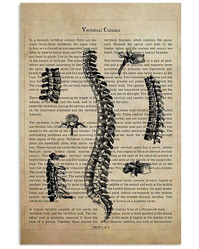 Chiropractor Vertebral Column