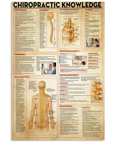 Chiropractor Chiropractic Knowledge