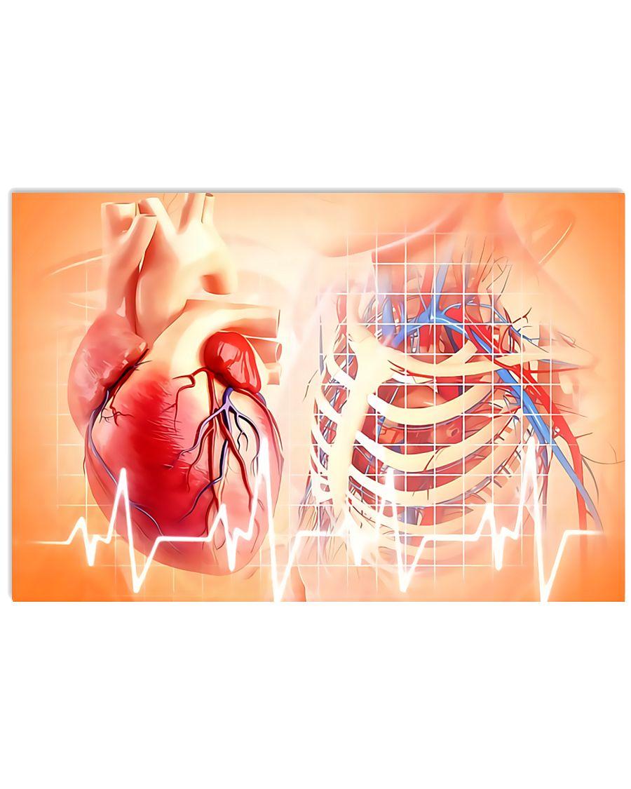 Anatomy Human Heart Cardiologist  17x11 Poster