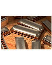 Many Art Harmonicas 17x11 Poster front