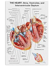 The Heart Knowlege Cardiologist 11x17 Poster front