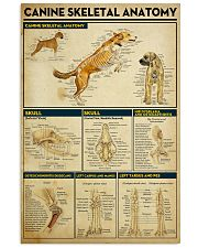 Veterinarian Canine Skeletal Anatomy Poster 11x17 Poster front