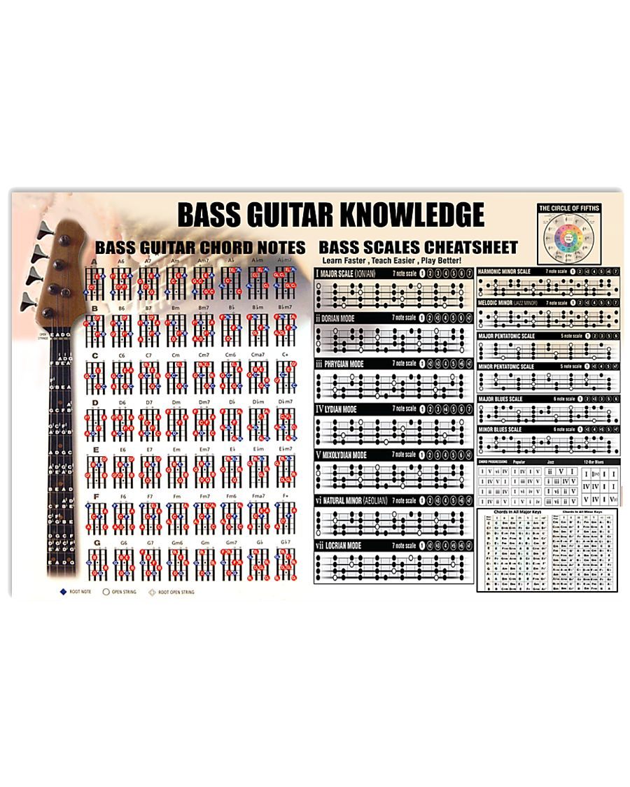 Bass Guitar Knowledge Chords Notes 17x11 Poster