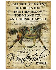 Horse Girl - What a wonderful world 11x17 Poster front