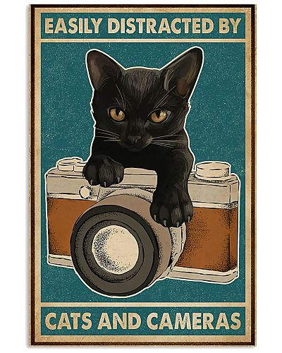 Photographer Distracted By Cats And Cameras