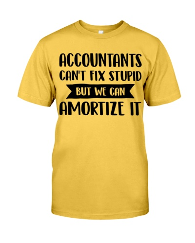 Accountant - We can amortize it