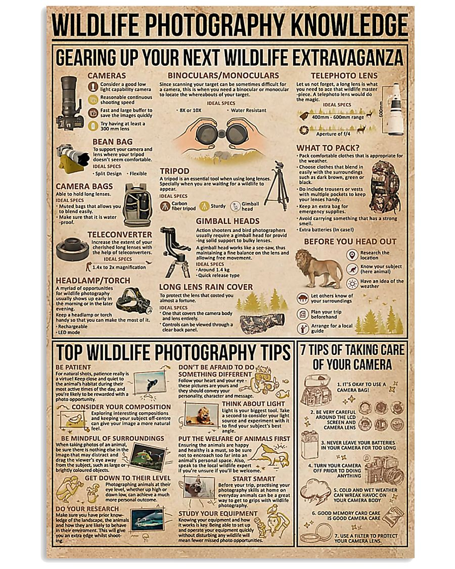 Wildlife Photography Knowledge 11x17 Poster