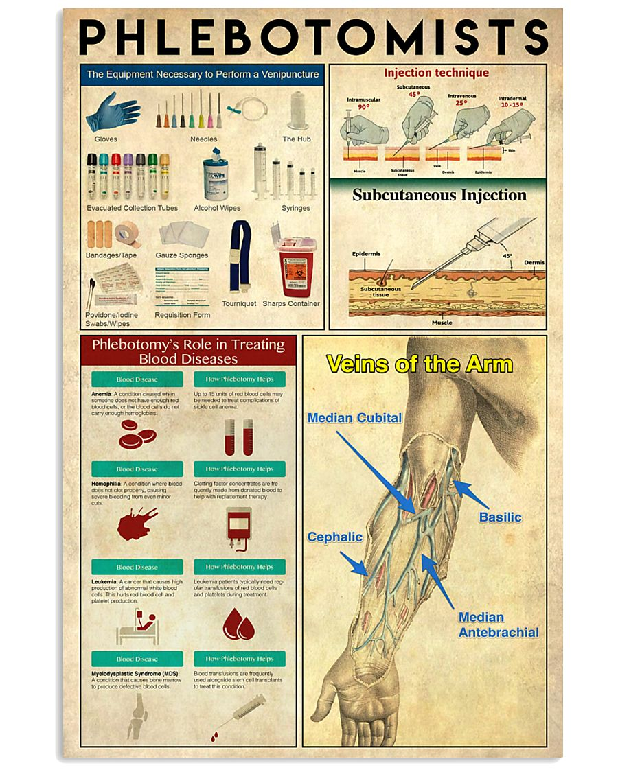 Phlebotomists Knowledge 11x17 Poster
