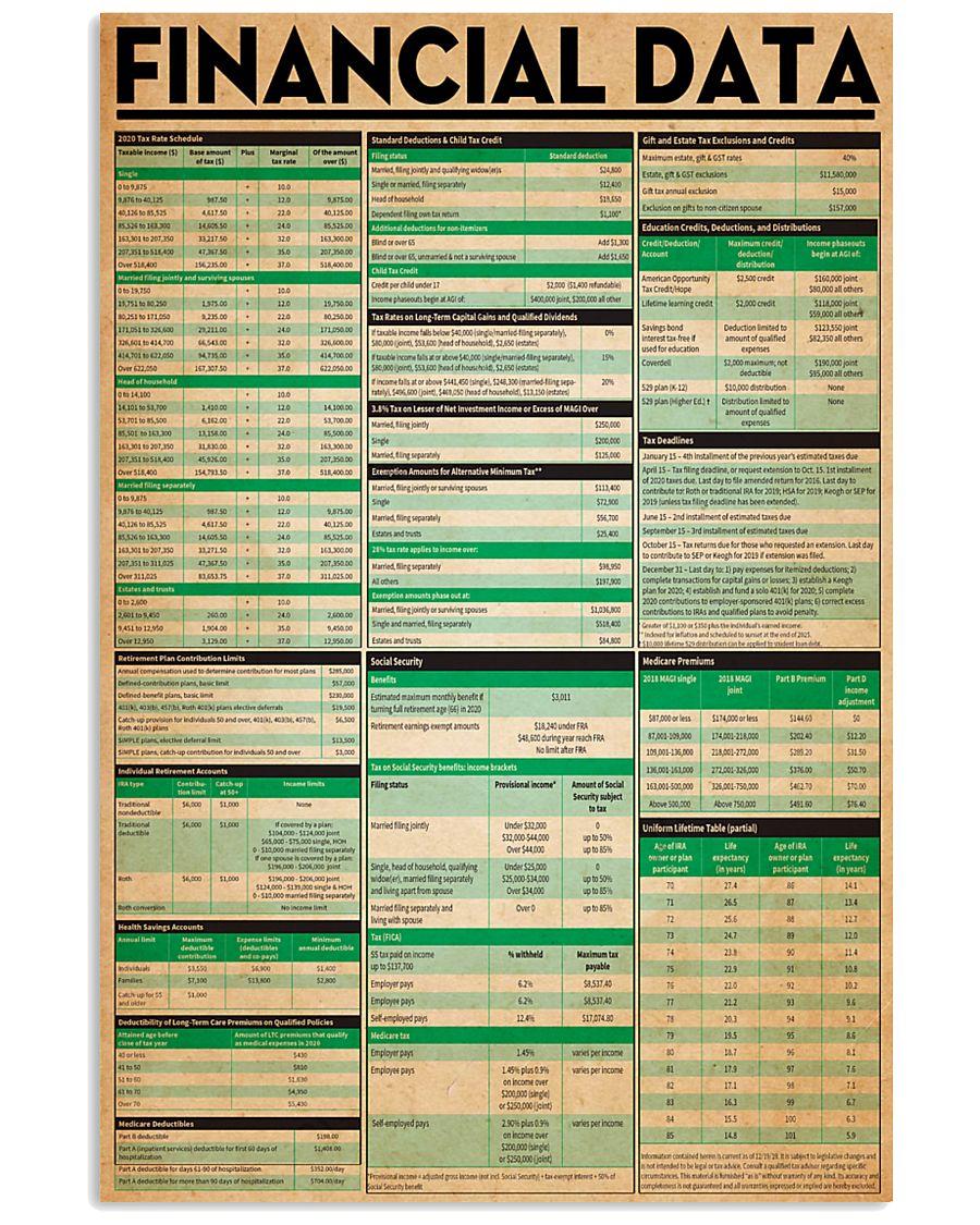 Accountant Financial Data 11x17 Poster
