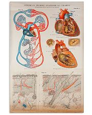Human Heart Anatomical Cardiologist 11x17 Poster front