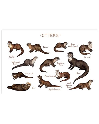 Kinds Of Otters