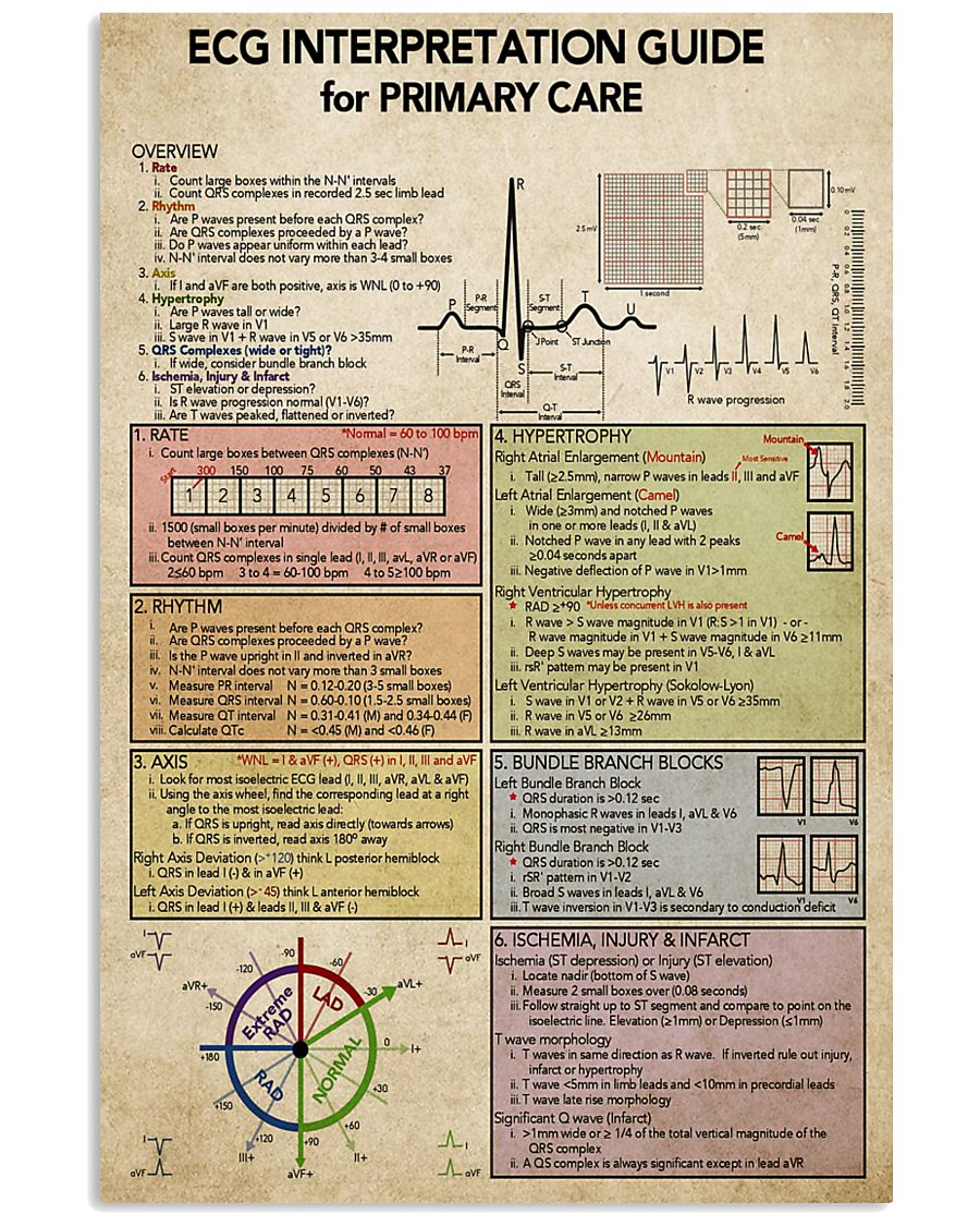ECG Interpratation Guide Cardiologist 11x17 Poster