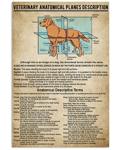 Veterinary Anatomical Planes Description